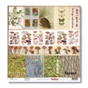 Бумага для скрапбукинга 30,5х30,5 см 190 гр/м односторон В лесу В поход за грибами 1, 1шт