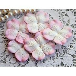 Цветы гортензии, цвет белый с розовой окантовкой, 50мм, 1цветок